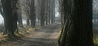 Trail Canal Castilla Ultrarace