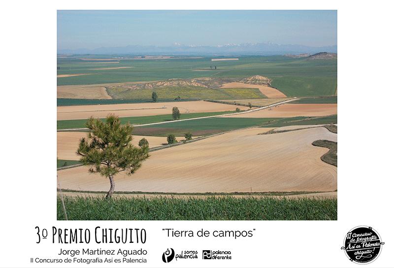 premio-Así-es-Palencia-3_Chiguito-Jorge-Martínez-Aguado_tierra-de-campos,-para-web